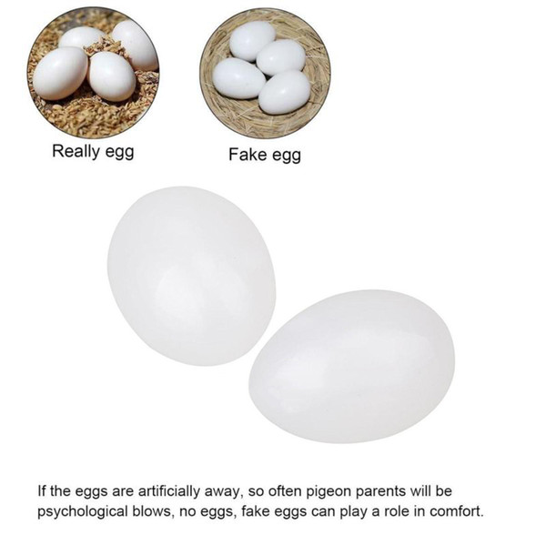 for racing homing pigeons help pigeons hatch 10pcs solid plastic eggs pigeon eggs dummy 2.6*3.6cm new sale useful